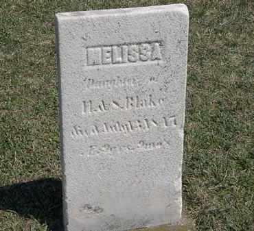 BLAKE, H. - Erie County, Ohio | H. BLAKE - Ohio Gravestone Photos