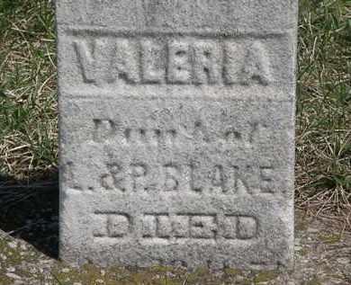 BLAKE, VALERIA - Erie County, Ohio   VALERIA BLAKE - Ohio Gravestone Photos