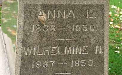 BRAUN, WILJELMINE N. - Erie County, Ohio   WILJELMINE N. BRAUN - Ohio Gravestone Photos