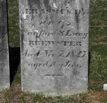 BREWSTER, LUCY - Erie County, Ohio | LUCY BREWSTER - Ohio Gravestone Photos