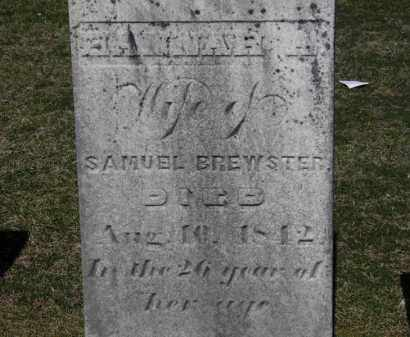 BREWSTER, SAMUEL - Erie County, Ohio | SAMUEL BREWSTER - Ohio Gravestone Photos