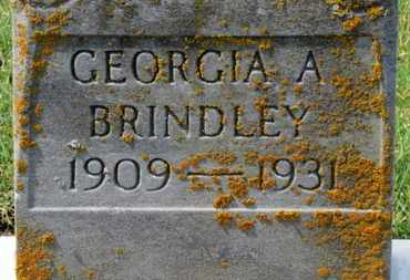 BRINDLEY, GEORGIA A. - Erie County, Ohio | GEORGIA A. BRINDLEY - Ohio Gravestone Photos