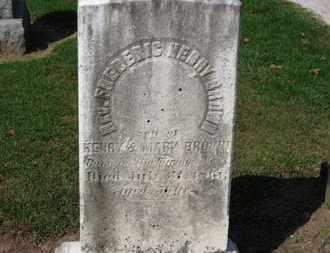 BROWN, MARY - Erie County, Ohio | MARY BROWN - Ohio Gravestone Photos