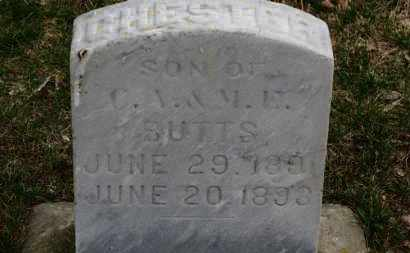 BUTTS, CHESTER - Erie County, Ohio | CHESTER BUTTS - Ohio Gravestone Photos