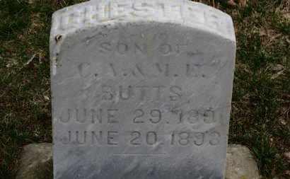 BUTTS, C.A. - Erie County, Ohio | C.A. BUTTS - Ohio Gravestone Photos