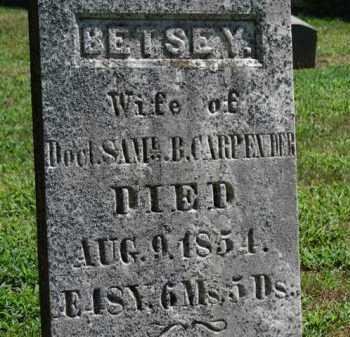 CARPENDER, BETSEY - Erie County, Ohio | BETSEY CARPENDER - Ohio Gravestone Photos