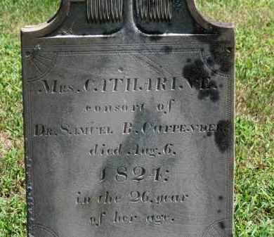 CARPENDER, CATHARINE - Erie County, Ohio | CATHARINE CARPENDER - Ohio Gravestone Photos
