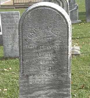 CARTER, ROBERT - Erie County, Ohio | ROBERT CARTER - Ohio Gravestone Photos