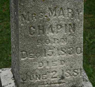 CHAPIN, MARY - Erie County, Ohio | MARY CHAPIN - Ohio Gravestone Photos