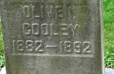 COOLEY, OLIVE I. - Erie County, Ohio   OLIVE I. COOLEY - Ohio Gravestone Photos
