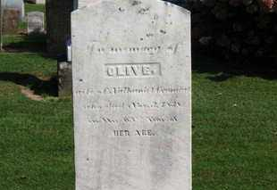 CRANDALL, OLIVE - Erie County, Ohio | OLIVE CRANDALL - Ohio Gravestone Photos
