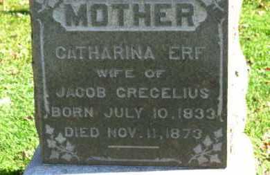 ERF CRECELIUS, CATHARINA - Erie County, Ohio   CATHARINA ERF CRECELIUS - Ohio Gravestone Photos