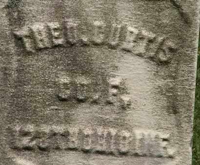 CURTIS, THEO. - Erie County, Ohio | THEO. CURTIS - Ohio Gravestone Photos