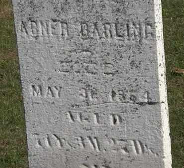 DARLING, ABNER - Erie County, Ohio | ABNER DARLING - Ohio Gravestone Photos