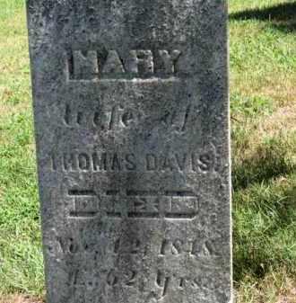 DAVIS, THOMAS - Erie County, Ohio | THOMAS DAVIS - Ohio Gravestone Photos
