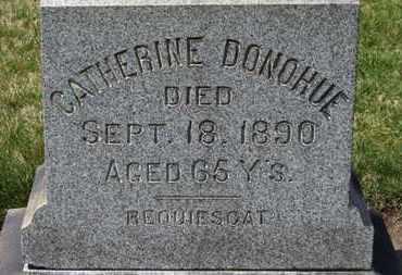 DONOHUE, CATHERINE - Erie County, Ohio   CATHERINE DONOHUE - Ohio Gravestone Photos