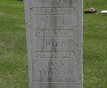 DRAKE, CATHARINE - Erie County, Ohio   CATHARINE DRAKE - Ohio Gravestone Photos
