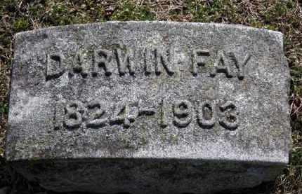FAY, DARWIN - Erie County, Ohio | DARWIN FAY - Ohio Gravestone Photos