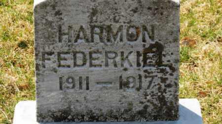 FEDERKIEL, HARMON - Erie County, Ohio   HARMON FEDERKIEL - Ohio Gravestone Photos
