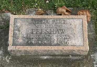 FLEMING FELSHAW, AMELIA ALICE - Erie County, Ohio | AMELIA ALICE FLEMING FELSHAW - Ohio Gravestone Photos