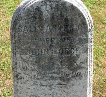 FORCE, SALLY ANN - Erie County, Ohio | SALLY ANN FORCE - Ohio Gravestone Photos