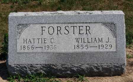 FORSTER, WILLIAM J. - Erie County, Ohio   WILLIAM J. FORSTER - Ohio Gravestone Photos