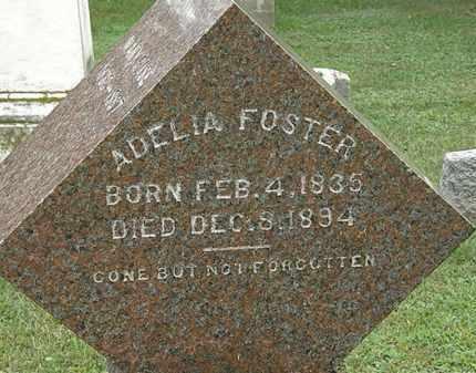 FOSTER, ADELIA - Erie County, Ohio   ADELIA FOSTER - Ohio Gravestone Photos