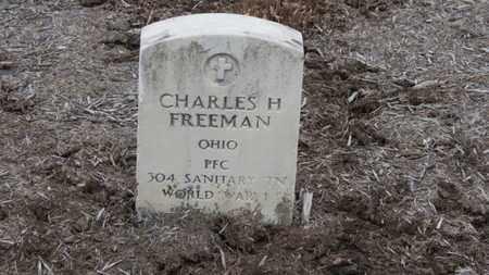 FREEMAN, CHARLES H. - Erie County, Ohio | CHARLES H. FREEMAN - Ohio Gravestone Photos