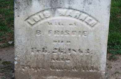 FRISBIE, B. - Erie County, Ohio | B. FRISBIE - Ohio Gravestone Photos