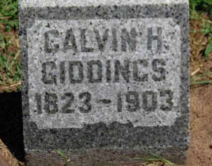 GIDDINGS, CALVIN H. - Erie County, Ohio   CALVIN H. GIDDINGS - Ohio Gravestone Photos