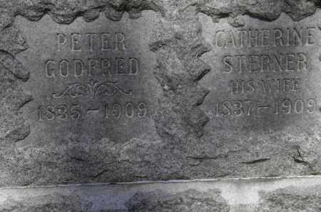 STERNER GODFRED, CATHERINE - Erie County, Ohio | CATHERINE STERNER GODFRED - Ohio Gravestone Photos