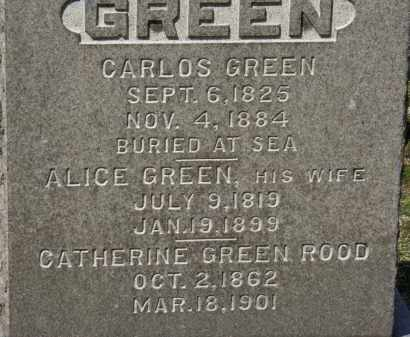 ROOD, CATHERINE - Erie County, Ohio | CATHERINE ROOD - Ohio Gravestone Photos