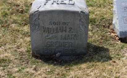 GREINER, WILLIAM - Erie County, Ohio | WILLIAM GREINER - Ohio Gravestone Photos