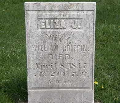GRIFFIN, WILLIAM - Erie County, Ohio | WILLIAM GRIFFIN - Ohio Gravestone Photos