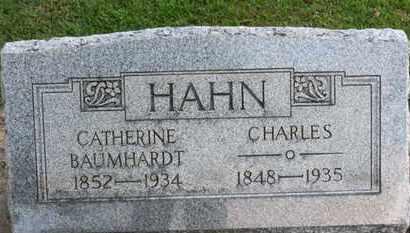 HAHN, CATHERINE - Erie County, Ohio | CATHERINE HAHN - Ohio Gravestone Photos