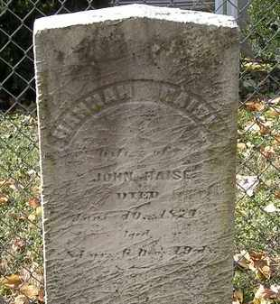 HAISE, JOHN - Erie County, Ohio | JOHN HAISE - Ohio Gravestone Photos