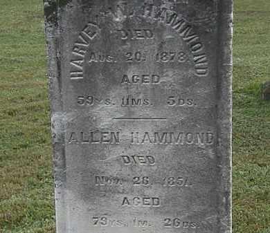 HAMMOND, ALLEN - Erie County, Ohio | ALLEN HAMMOND - Ohio Gravestone Photos
