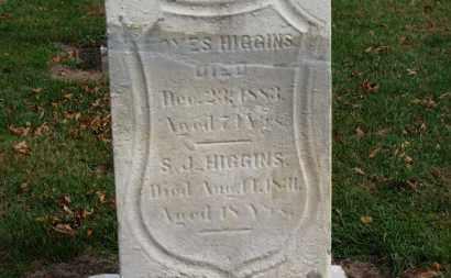 HIGGINS, S. J. - Erie County, Ohio | S. J. HIGGINS - Ohio Gravestone Photos