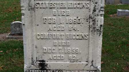 HIGGINS, COMFORT - Erie County, Ohio | COMFORT HIGGINS - Ohio Gravestone Photos