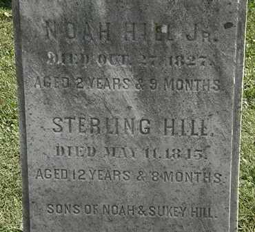 HILL, STERLING - Erie County, Ohio | STERLING HILL - Ohio Gravestone Photos