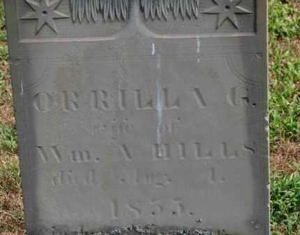 HILLS, WM. A. - Erie County, Ohio | WM. A. HILLS - Ohio Gravestone Photos