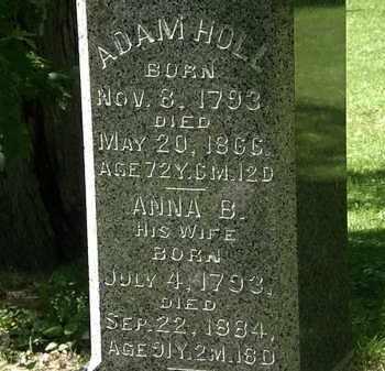 HOLL, ADAM - Erie County, Ohio | ADAM HOLL - Ohio Gravestone Photos