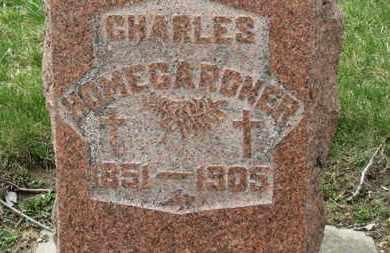HOMEGARDNER, CHARLES - Erie County, Ohio   CHARLES HOMEGARDNER - Ohio Gravestone Photos
