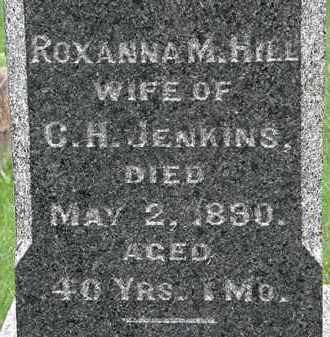 JENKINS, ROXANNA M. - Erie County, Ohio | ROXANNA M. JENKINS - Ohio Gravestone Photos