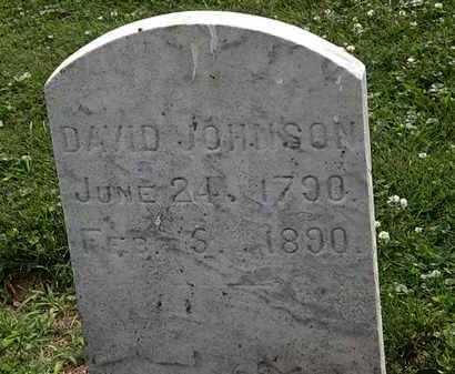 JOHNSON, DAVID - Erie County, Ohio | DAVID JOHNSON - Ohio Gravestone Photos