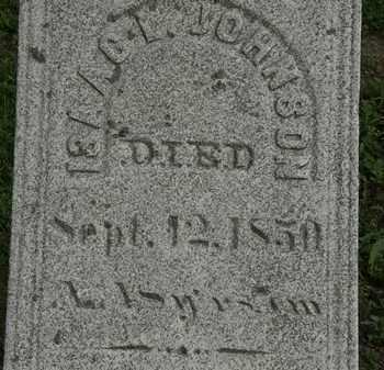 JOHNSON, ISAAC I. - Erie County, Ohio | ISAAC I. JOHNSON - Ohio Gravestone Photos