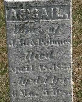 JONES, P. - Erie County, Ohio | P. JONES - Ohio Gravestone Photos