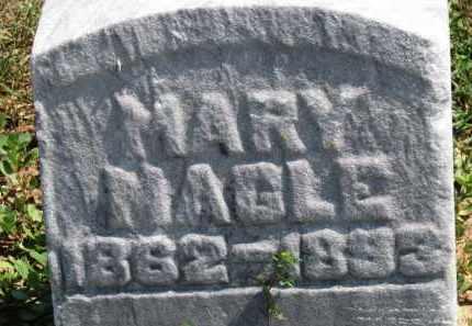 MAGLE, MARY - Erie County, Ohio | MARY MAGLE - Ohio Gravestone Photos