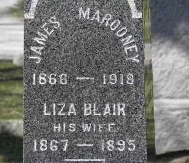 MAROONEY, LIZA - Erie County, Ohio | LIZA MAROONEY - Ohio Gravestone Photos