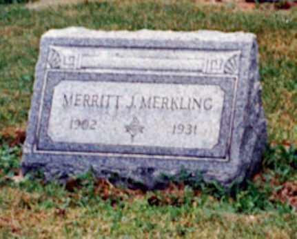 MERKLING, MERRITT J - Erie County, Ohio   MERRITT J MERKLING - Ohio Gravestone Photos